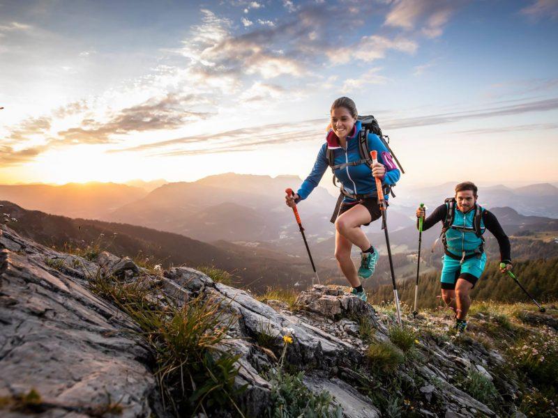 Categorie principala Bete trekking
